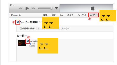 拡張 iphone 子 動画