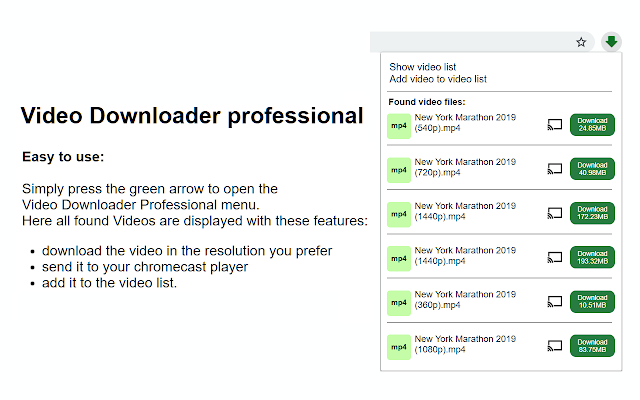 「Video Downloader Professional」1